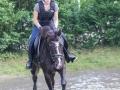 Training crosscountry paarden (10 van 185)