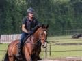 Training crosscountry paarden (20 van 185)