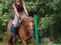 Training crosscountry paarden (4 van 185)