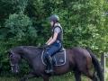 Training crosscountry paarden (5 van 185)