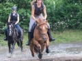 Training crosscountry paarden (7 van 185)