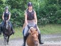 Training crosscountry paarden (9 van 185)